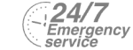 24/7 Emergency Service Pest Control in Leyton, E10. Call Now! 020 8166 9746